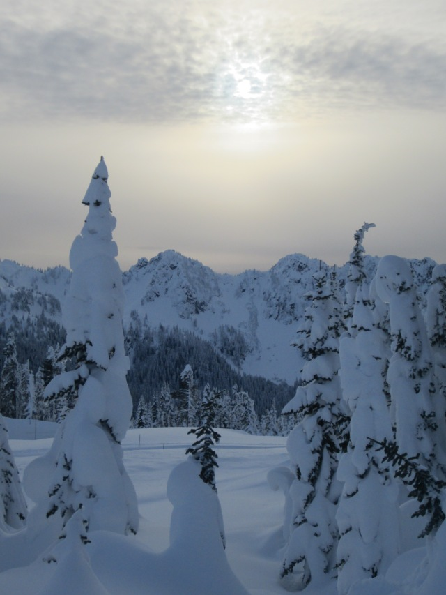 Snowshoe days at Mount Rainier